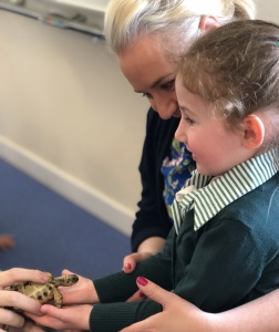 Zoolab Visits Early Years