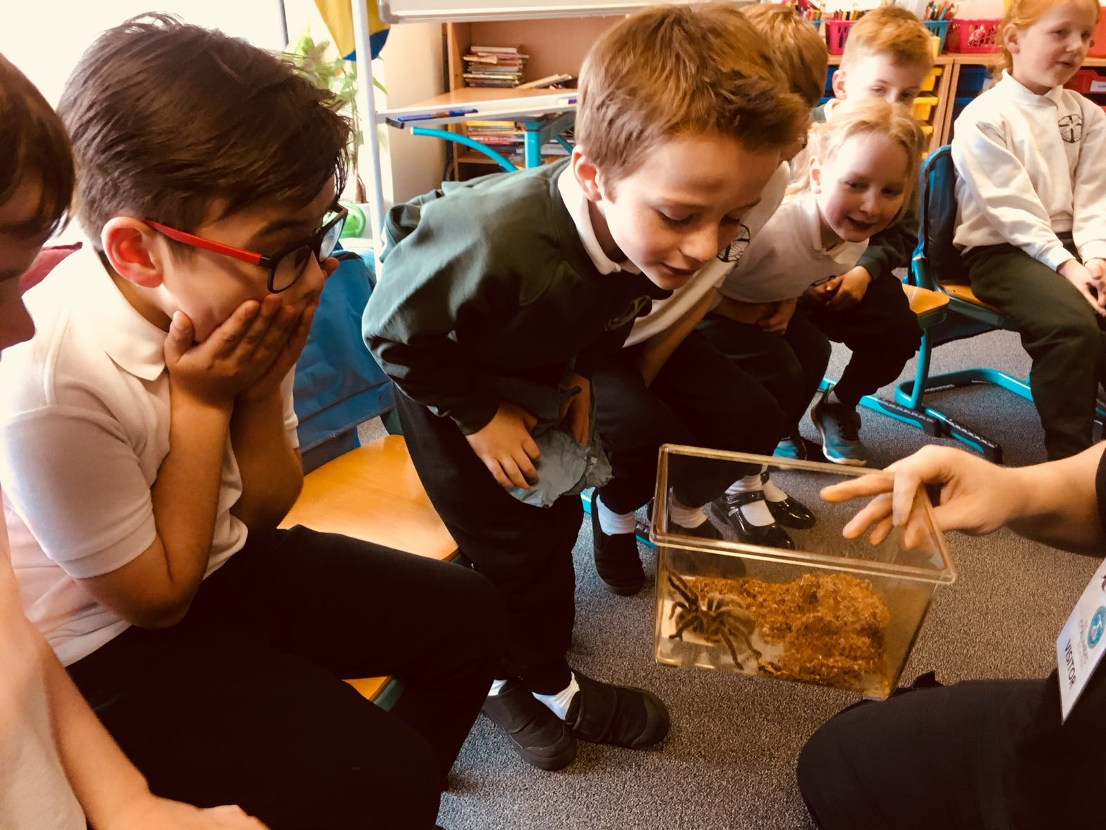 St Columba's Junior 3 Enjoy a Visit from Zoolab