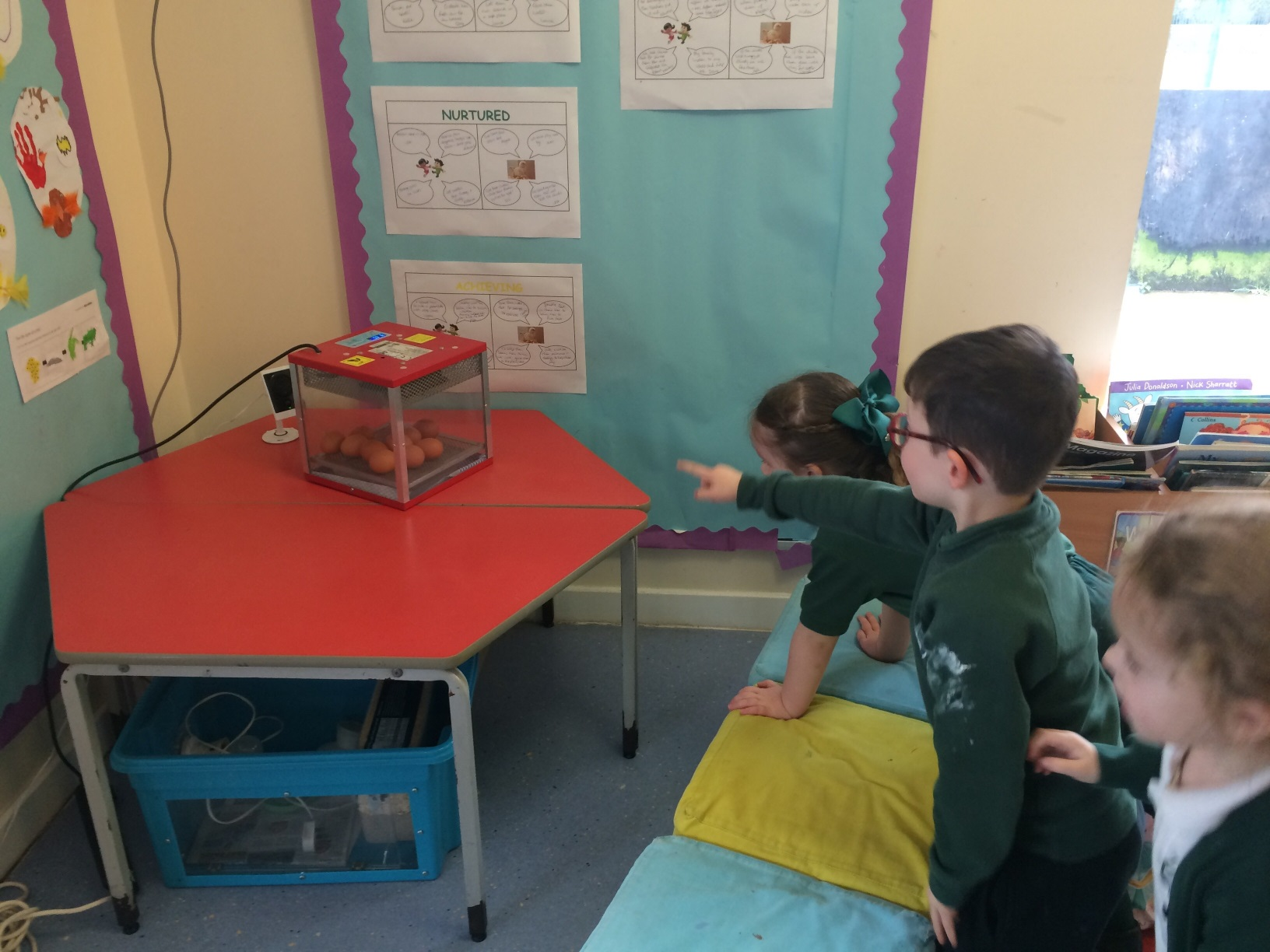St Columba's Early Years chicks arrive